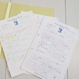 ACSI Handwritten geography (core/pure) notes for o level