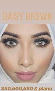 Daisy Brown ❤️