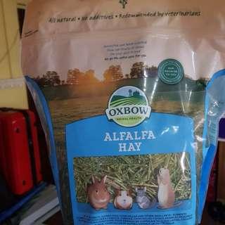 Oxbow Alfafa Hay