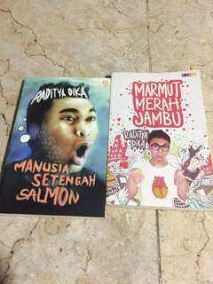 TAKE ALL - 50k Novel Raditya Dika Marmut merah jambu