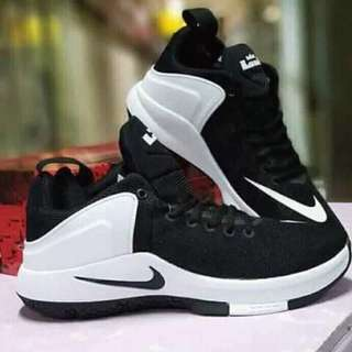 Nike zoom lebron witness