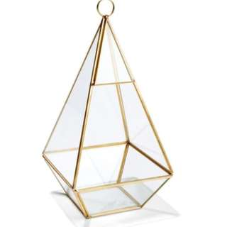 RENTAL: Glass Prism Terrarium