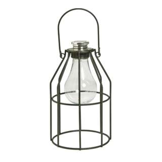 RENTAL : Decorative metal cage