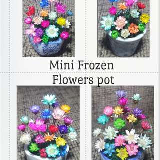 Mini frozen flowers little pot
