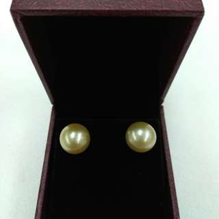 18k Yellow Gold South Sea Pearl Earrings