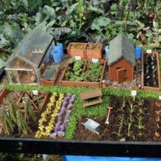 Gardening ♡ Mini Garden Mix Seeds Pack