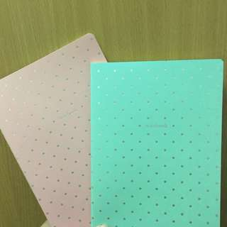 Polka Dot Notebooks (bundle of 2)
