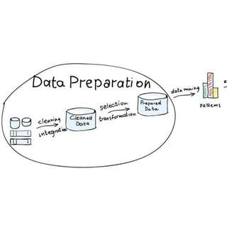 Data Preparation Freelancer