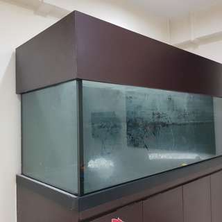 5x2x2 12mm Bare Tank (No Cabinet)