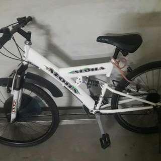 Aloha Bike 26er