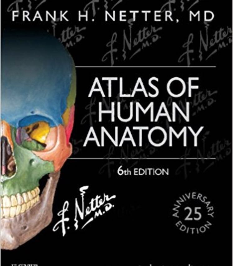 Netters Atlas Of Human Anatomy 8th Edition Books Stationery