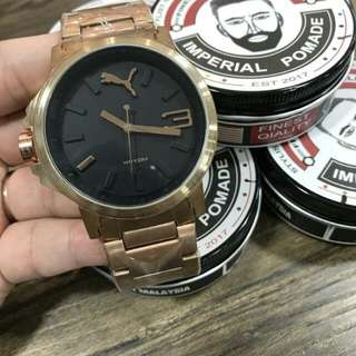 Puma Stainless Steel (Gold)