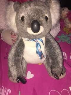 SALE!!! KOALA ORIGINAL 🇦🇺 AUSTRALIA