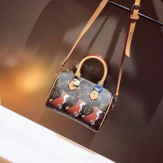 Hot!!!!! Louis Vuitton puppy purses