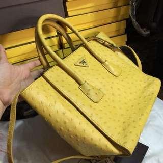 Prada Crocodile Leather