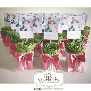 Cactus & Succulents Souvernirs/ Giveaways