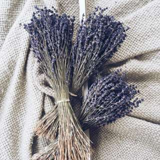 Dried Lavender Flowers Bouquet