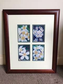 Frangipani picture in quality frame