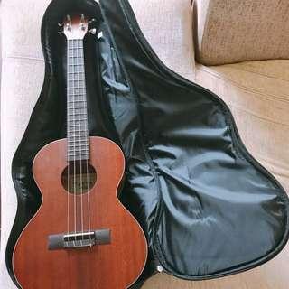 樂器 KALA