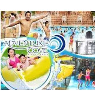 ADVENTURE COVE WATER PARK ADULT