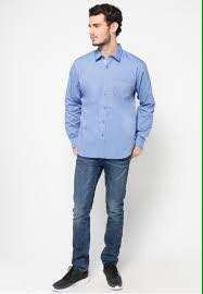 Carvil Blue Top