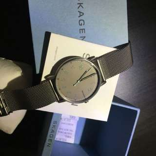 SKAGEN Men Wristwatch