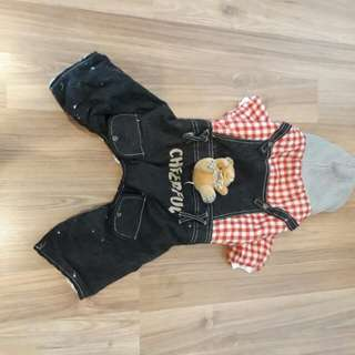 Overalls for dogs