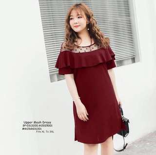 Upper mesh dress fits S-L