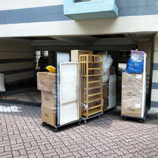 Same Day Movers and Logistic