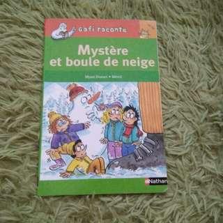 French Chapter Book - Mystere Et Boule De Neige
