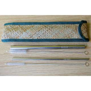 Metal Straws with Cleaning Brush and Pouch