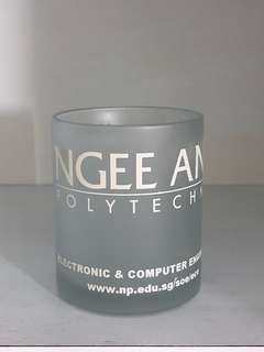 Ngee Ann Polytechnic Frosted Mug