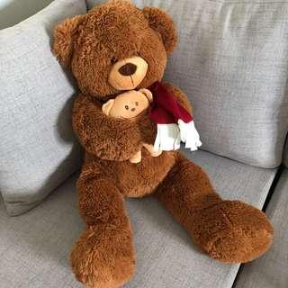 XL Teddy Bear