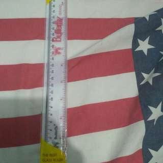 Penggaris plastik 30 cm