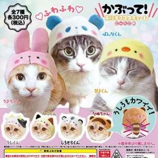 貓貓動物造型帽(可散賣)