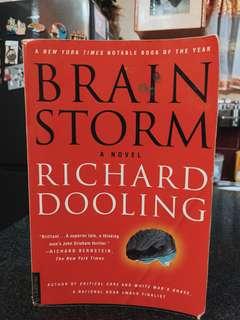 Brain storm (novel)