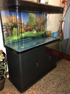 Fish Tank with cabinet and accessories