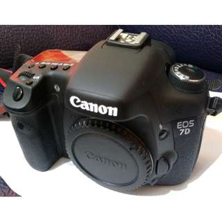 CANON EOS 7D (機身) 快門數:6800