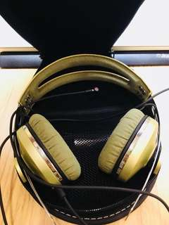Sennheiser momentum on ear green cheap
