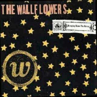 arthcd THE WALLFLOWERS  Bringing Down The Horse CD