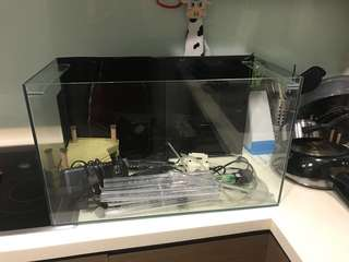 Fish tank and turtle tank