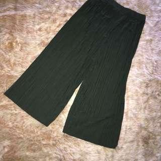 Pleated Pants New