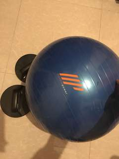 Stability Ball (with free Push-up bar)