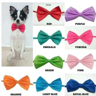 Dog Cat Rabbit Pet BOWTIES BOW TIES