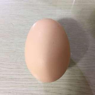 (限面交)自己養的土雞蛋ㄧ盒10入