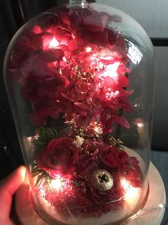 Season set-Lover's tree (Japan preserved rose )
