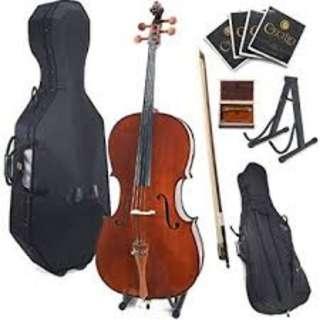 Cecilio 300 Cello