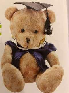 25cm Graduation Bear with graduation cloak & hat