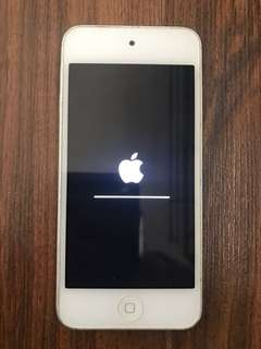 iPod Touch 5th Gen