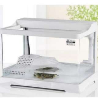 Turtle tank with top filter (pre-order)